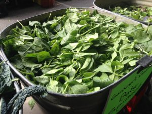 Fresh greens--a great way to eat more veggies. From www.eatrightmama.com
