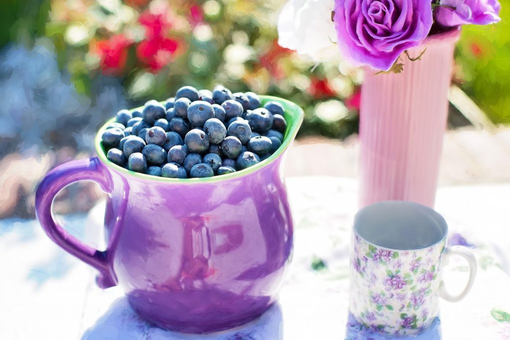 blueberries in pitcher Jill111 pixabay