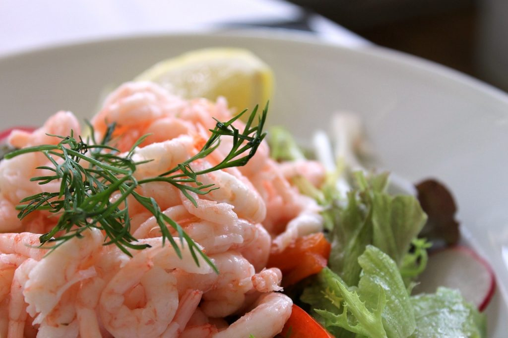 shrimp-salad-833214_1280 pix elos