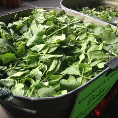 Fresh greens at the farmers market