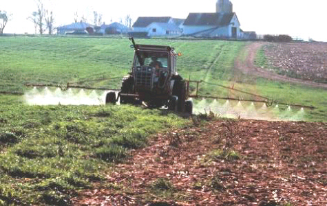 Pesticides and children don't mix--they are linked to increased risk of ADHD.